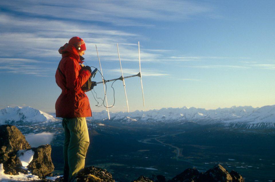 Radio telemetry at Chilkat Pass BC