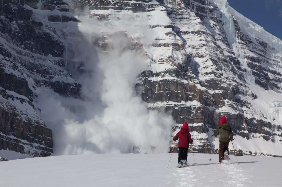 Avalanche on Snow Dome-Jasper National Park