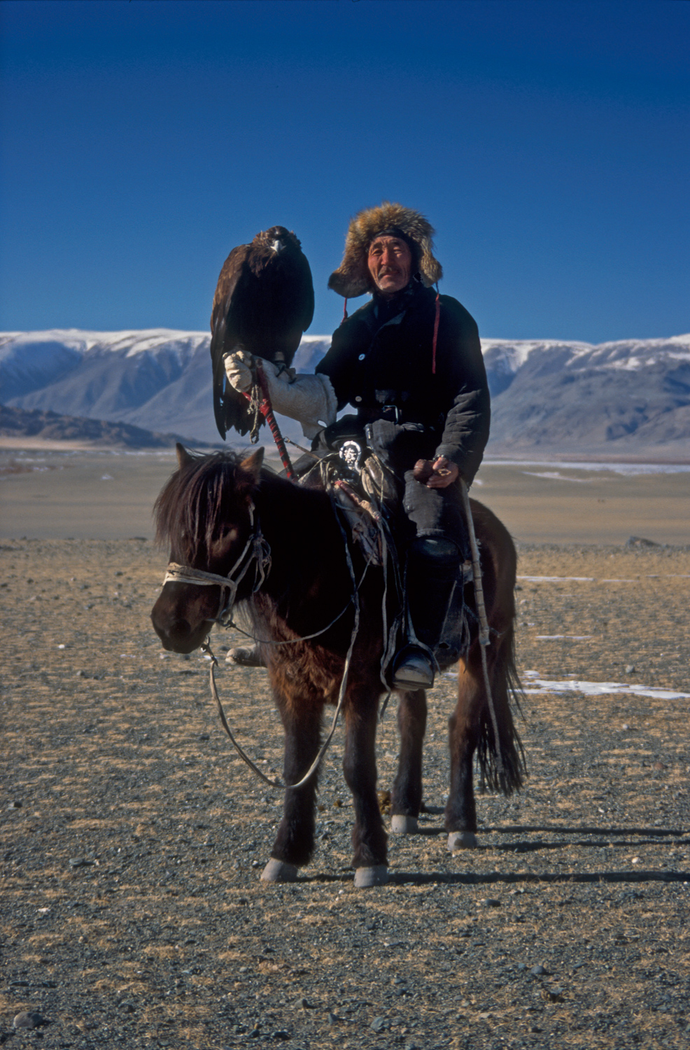 Eagle hunter with Golden Eagle in Bayan Olgii Mongolia