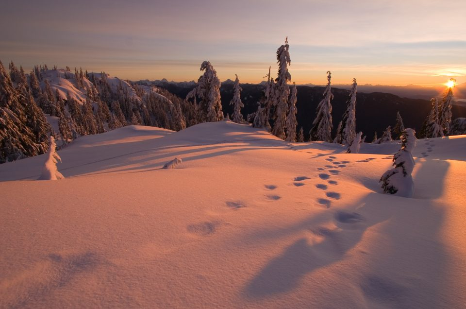 Winter sunrise at Mt. Seymour Vancouver BC